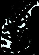 Logo FASO